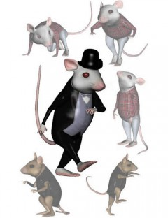 House Mouse's Poses