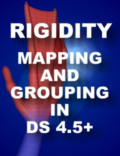 Rigidity Grouping and Mapping in DS 4.5+