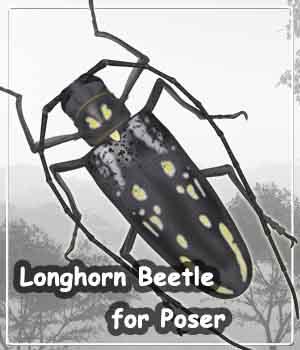 Longhorn Beetle for Poser