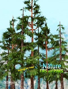 Nature- Firs and Pines