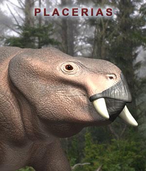 Placerias