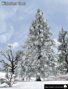 RPC Volume 2: Winterland Trees