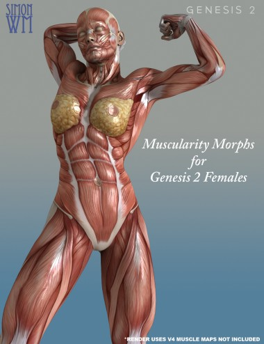 Muscularity Morphs for Genesis 2 Female(s)