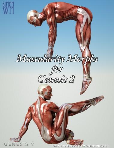 Muscularity Morphs for Genesis 2 Bundle