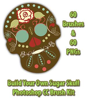 FB Sugar Skull Brush Kit