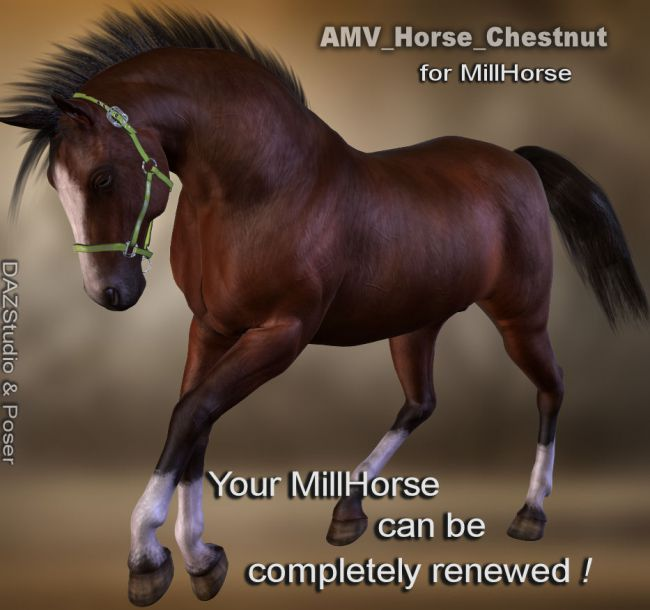AMV_Horse_Chestnut for Millennium Horse