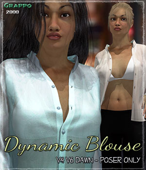 Dynamic Blouse