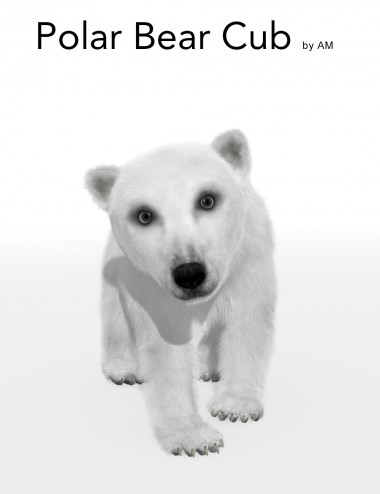 Polar Bear Cub by AM