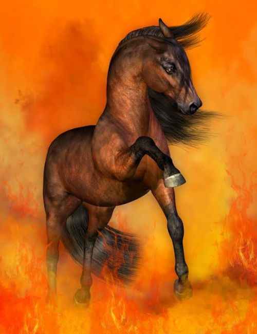 Flint_Hawk Pose Pack 1 for the HiveWire Horse