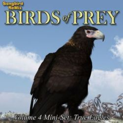Songbird ReMix Birds of Prey Vol 4 Mini-Set- True Eagles