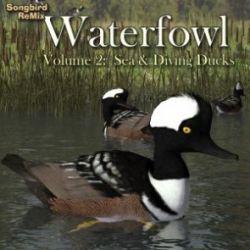 Songbird ReMix Waterfowl Vol 2- Sea & Diving Ducks