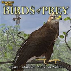 Songbird ReMix Birds of Prey Vol 2 Mini-Set- European Hawks