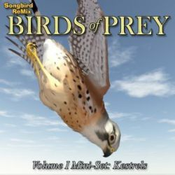 Songbird ReMix Birds of Prey Vol 1 Mini-Set- Kestrels