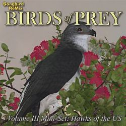 Songbird ReMix Birds of Prey Vol 3 Mini-Set- Hawks of the U.S.