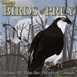 Songbird ReMix Birds of Prey Vol 3 Mini-Set- Hawks of Canada