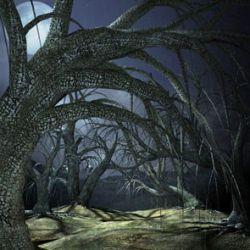 Creepy Trees II