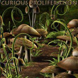 A Curious Proliferation