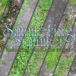 Simmering Summer