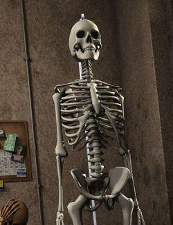 LoREZ Skeleton