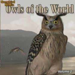 Songbird ReMix Owls of the World Volume 2