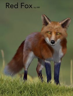Red Fox by AM
