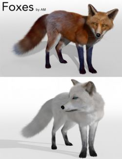 Foxes by AM