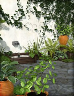 Green Backyard Garden
