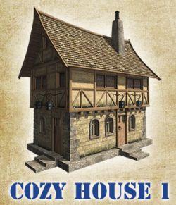 Cozy house 1