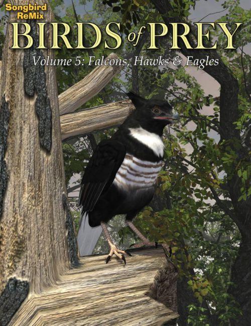 Songbird ReMix Birds of Prey Vol 5 - Falcons, Hawks & Eagles