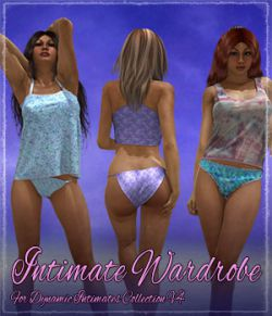 Intimate Wardrobe for Dynamic Intimates Collection