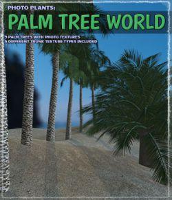 Photo Plants: Palm World