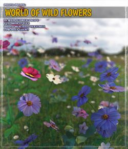 Photo Plants: World of Wildflowers
