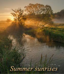 Summer sunrises