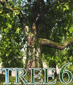 Flinks Tree 6