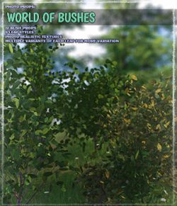 Photo Plants: World of Bushes