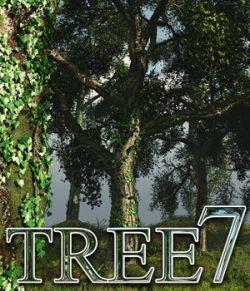 Flinks Tree 7