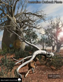 RPC Volume 4: Australian Outback