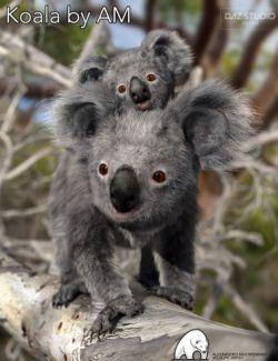 Koala by AM