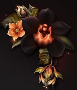 Moonbeam's Macabre Orchids