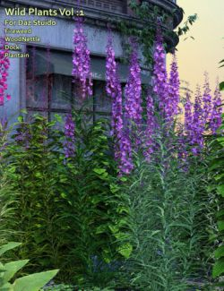 Wild Plants Vol: 1 for Daz Studio