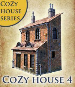 Cozy house 4