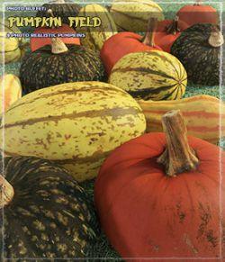 Photo Buffet: Pumpkin Field