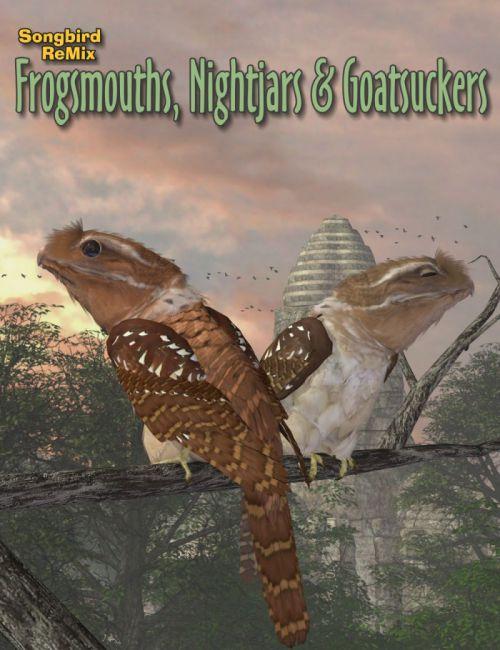 Songbird ReMix Frogmouths, Nightjars & Goatsuckers