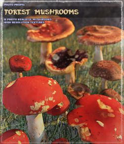 Photo Props: Forest Mushrooms