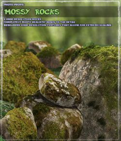 Photo Props: Mossy Rocks