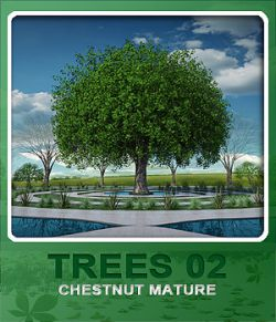 Trees02 Chestnut Mature