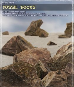 Photo Props: Fossil Rocks