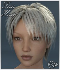 Tau Hair For Genesis 3