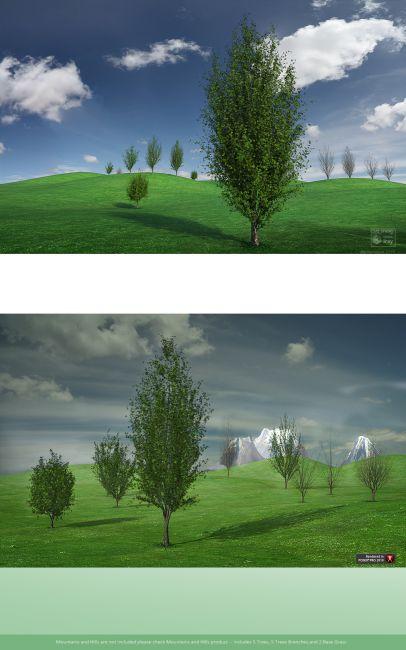 Trees03 Chestnut Tall