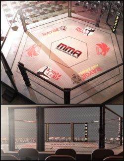 MMA Fighting Arena